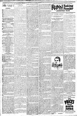 Logansport Pharos-Tribune from Logansport, Indiana on August 29, 1896 · Page 4